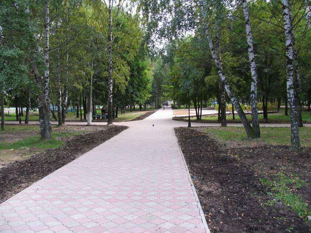 Парк в Долгопрудном очень красивый