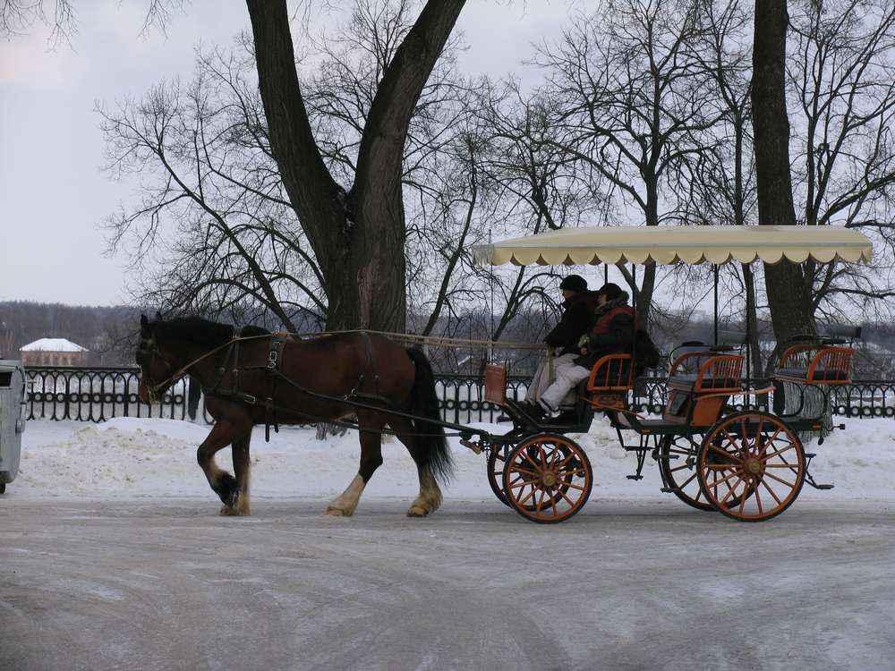 Даже зимой здесь катают на лошадях