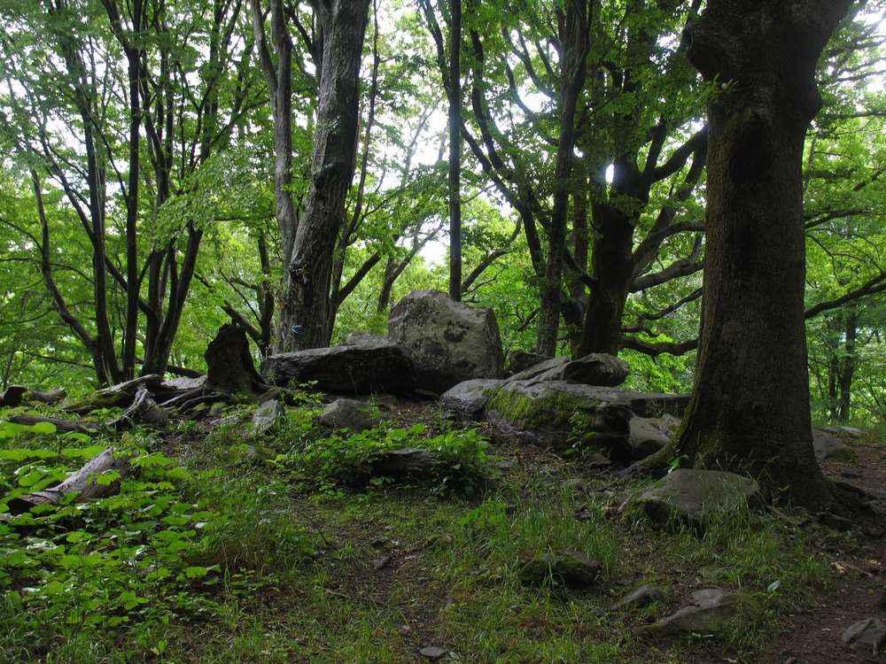 Камни на лесной опушке