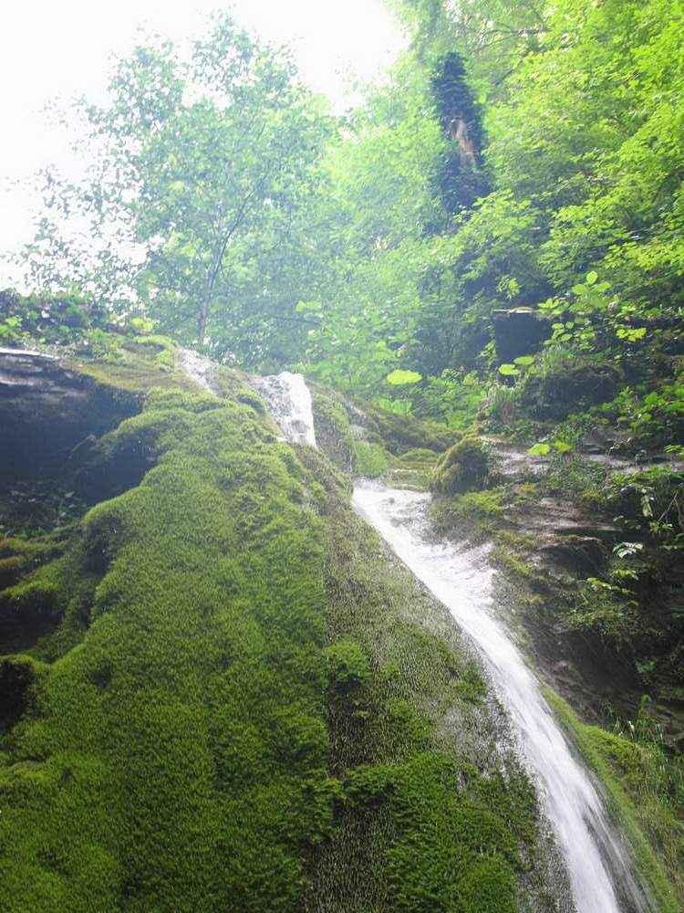 водопад порос мхом