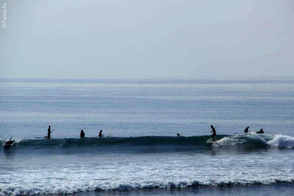 Серферы в волнах