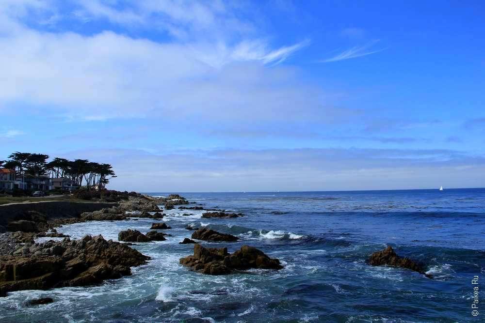 Прибрежные скалы у берега Пасифик Гроув