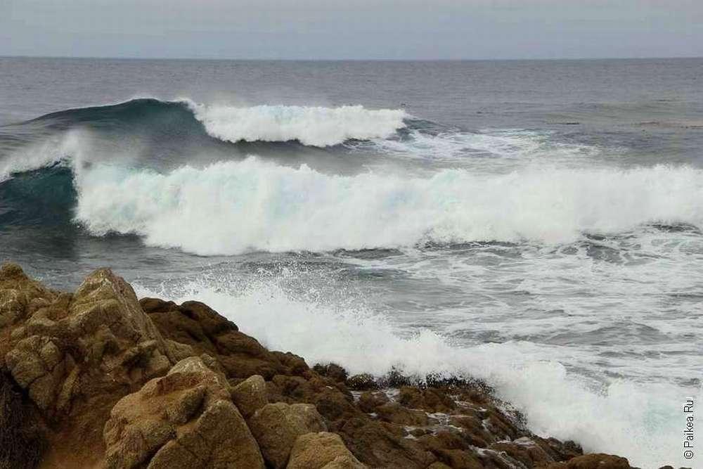 Волны Тихого океана
