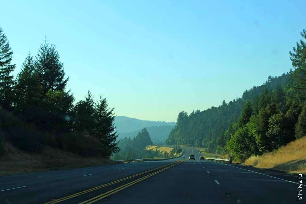 Лесное шоссе