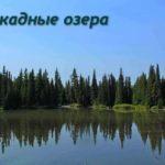 Отражение хвойного леса в озере