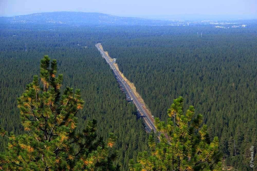 Дорога в национальном заповеднике США