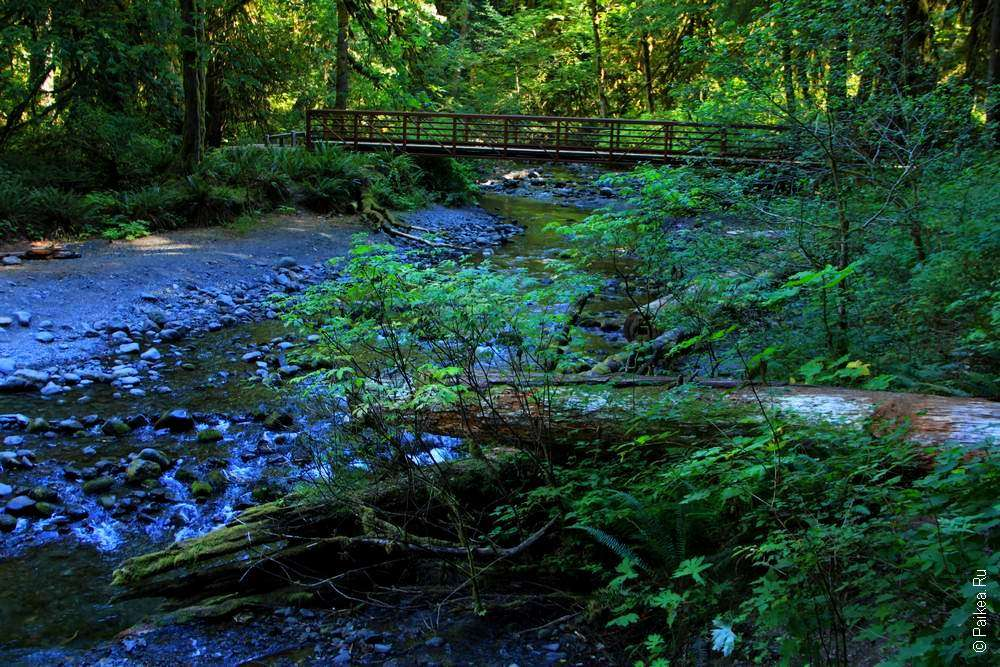 Ручей и мост через него