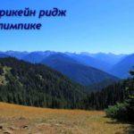 Харрикейн ридж — пеший маршрут в горы с видом на парк Олимпик