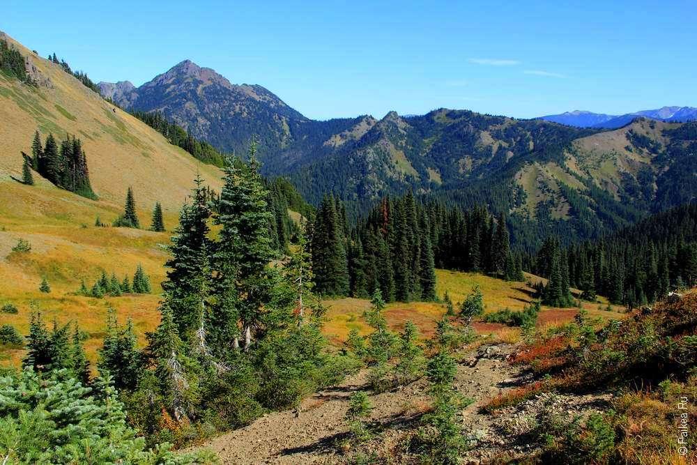 Треккинг в горы США