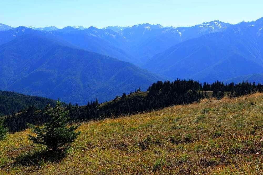 Горный пейзаж на фото