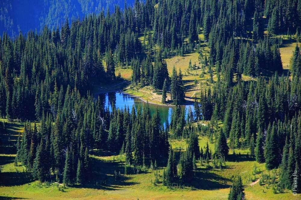 Лесное озеро у горы Рейнир