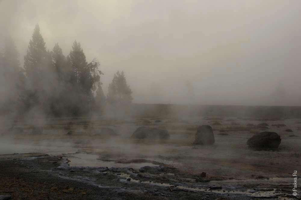 Призрачные деревья у термального источника