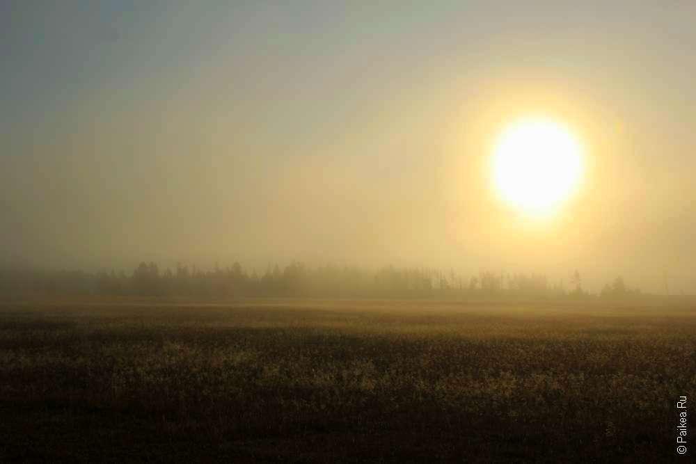 Солнце встает из-за тумана