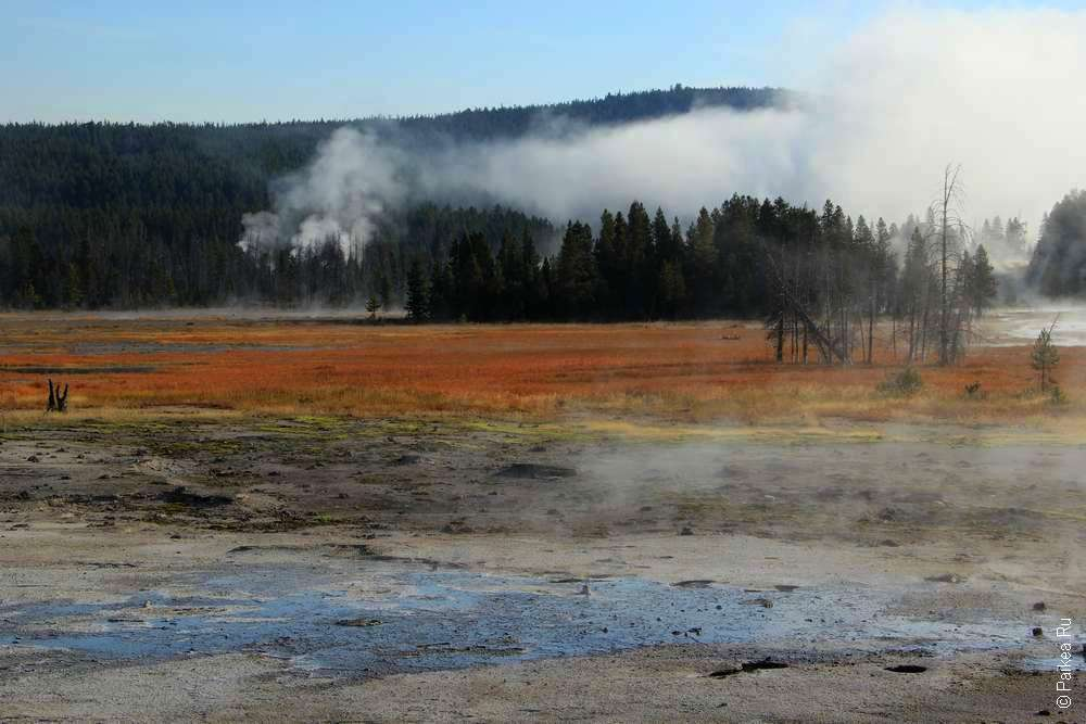 Пейзаж в Yellowstone National Park