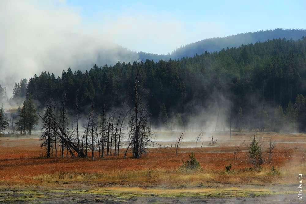 Осень в национальном парке Йеллоустоун