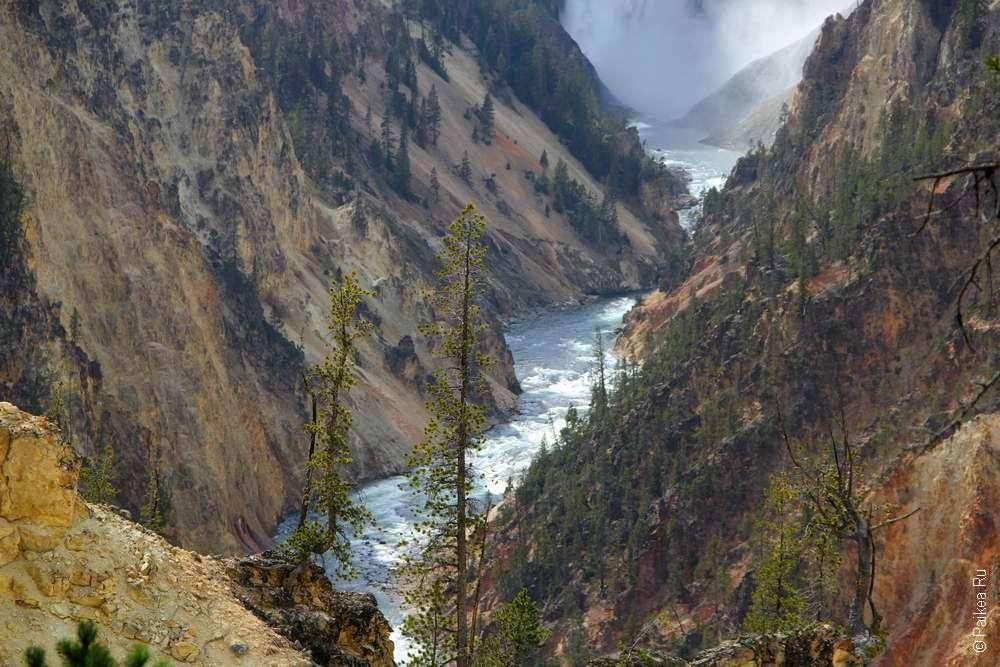Река Йеллоустоун и каньон