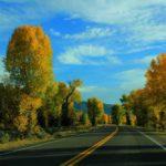 Дорога вдоль реки Снейк