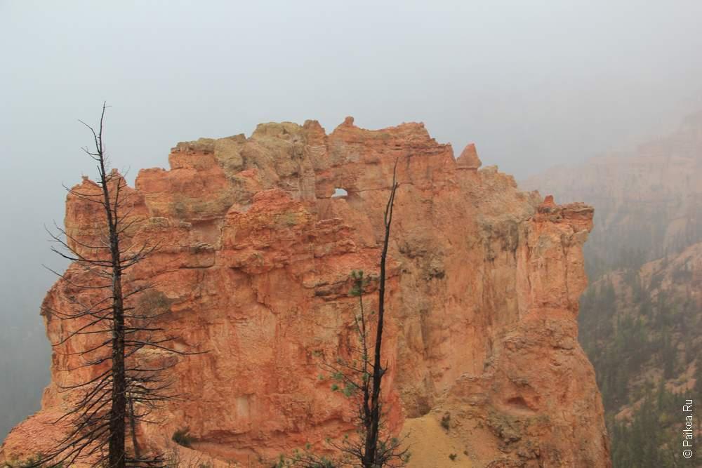 Брайс каньон, США (Bryce canyon, USA)