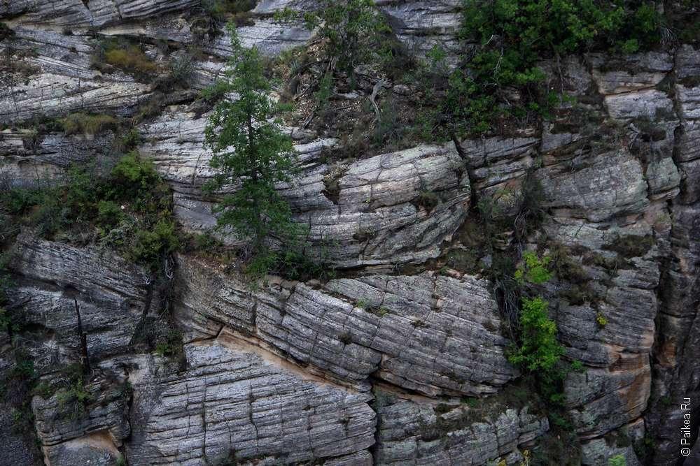 Стены каньона Уолнат