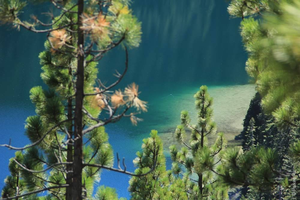 калифорния природа