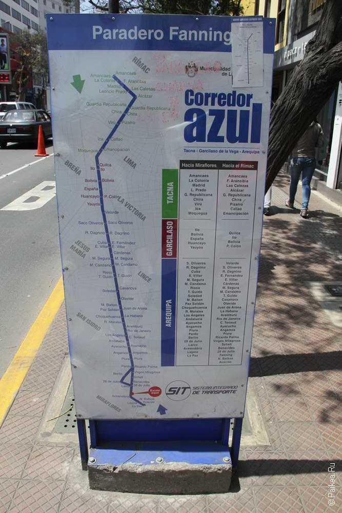 Конечная остановка синего автобуса