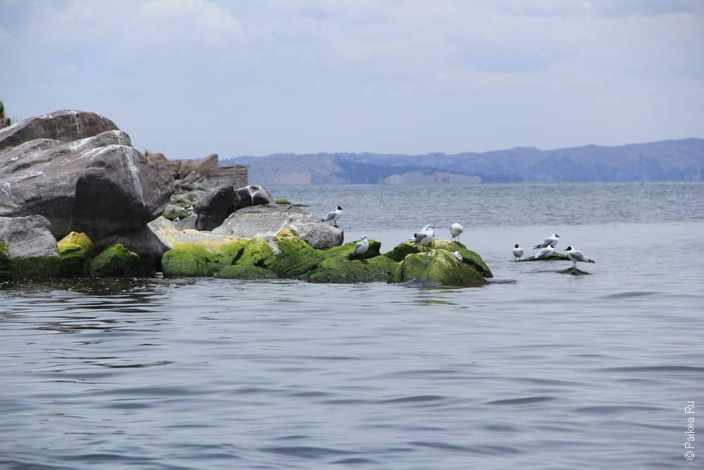 скалы острова такиле