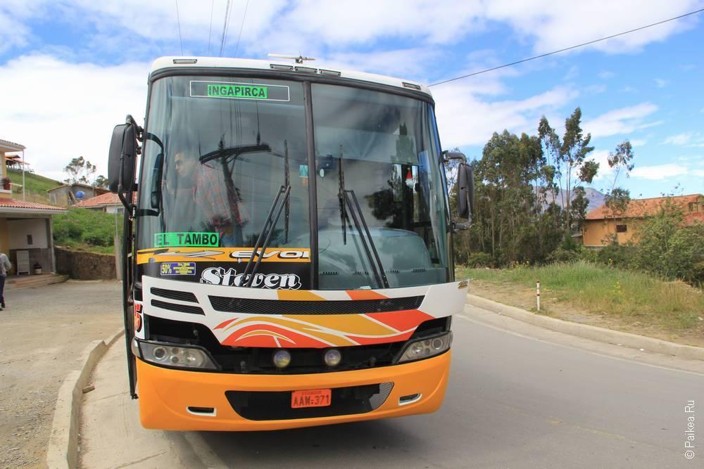 Вот такой автобус ходит в Ингапирку