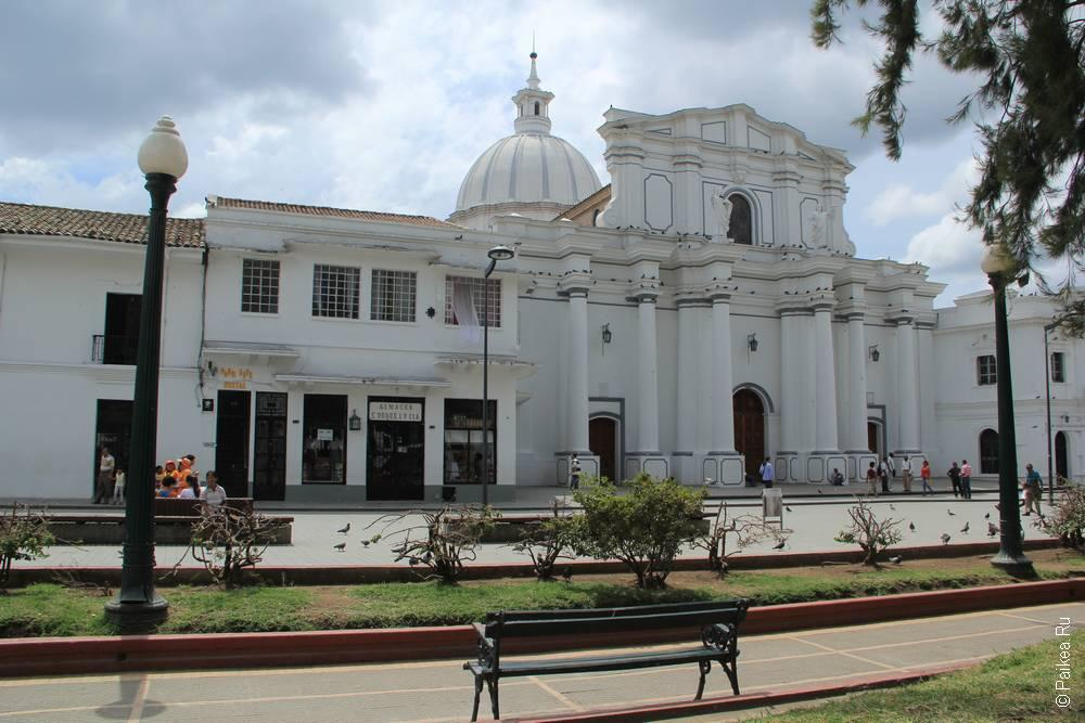 Кафедраль