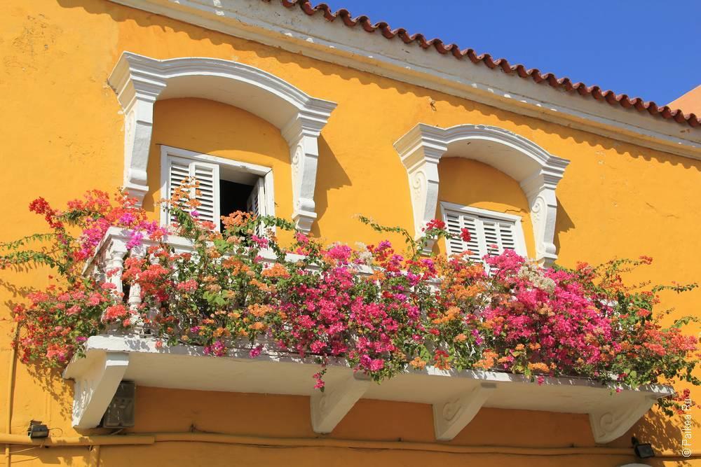 Цветы и красочная Картахена
