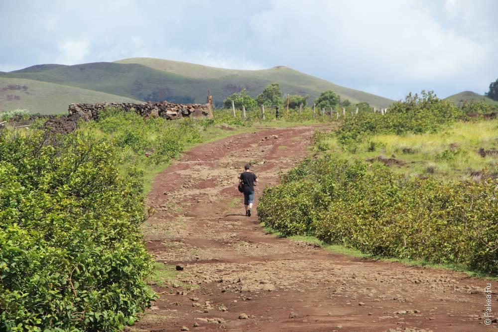 Калин идет в сторону пещеры Ану Те Паху