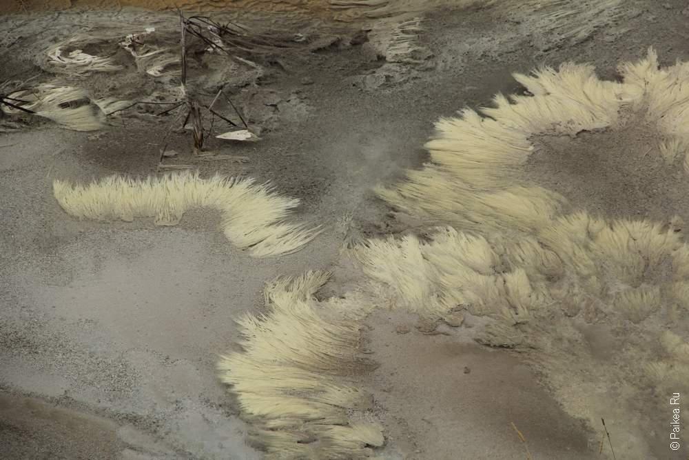 Красота микроорганизмов в горячих источниках