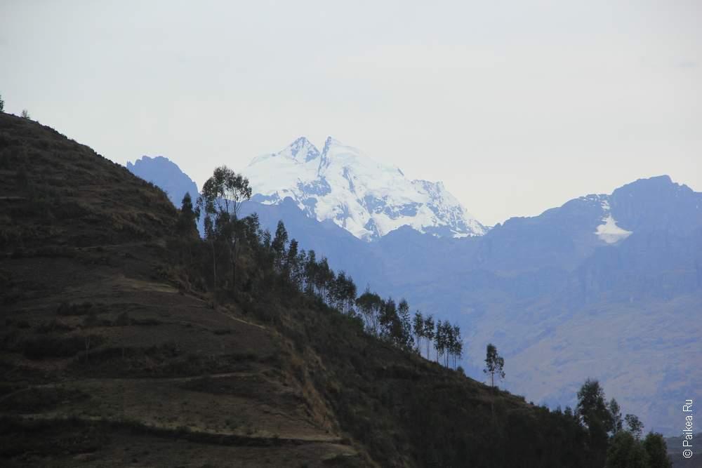 Зеленые холмы и снежные вершины