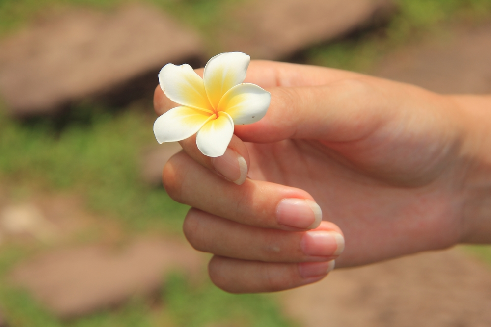 Жизнь - это дар, который стоит научиться принимать