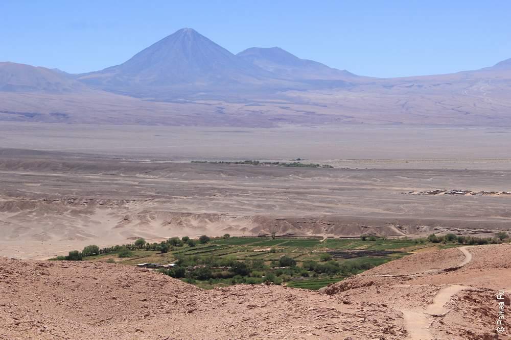 Пустыня, оазис и вулкан (опять в кадр влез, упс!)