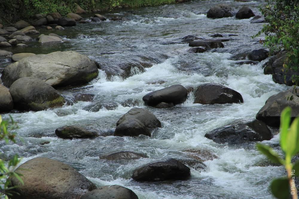 Река превращается почти в ручей,а потом снова расширяется