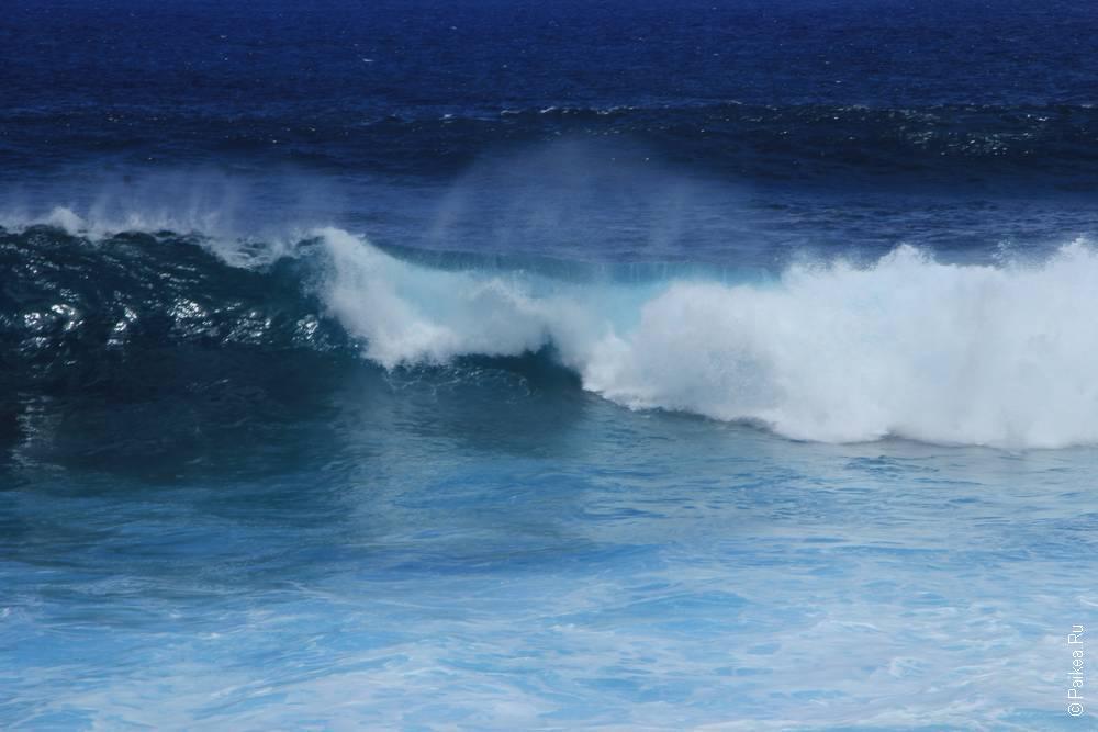 Океан бурный, совсем не тихий