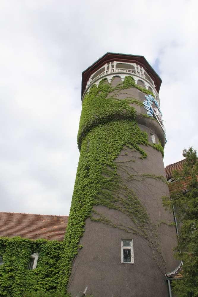 Светлогорск башня