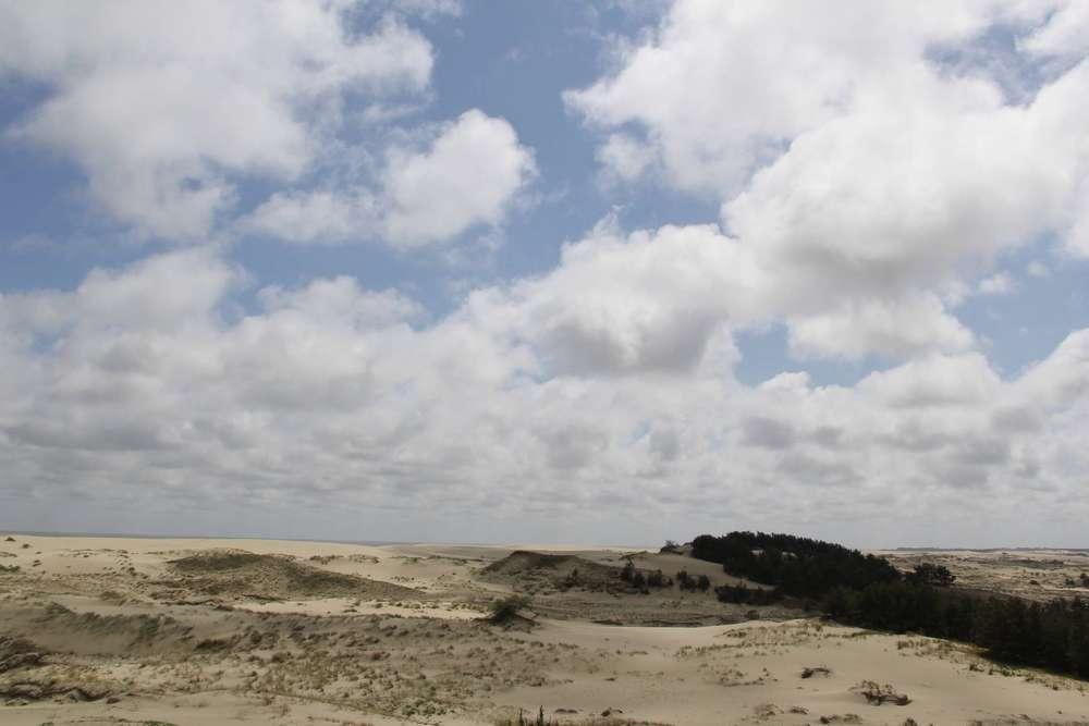 Вид со смотровой площадки Высота Эфа
