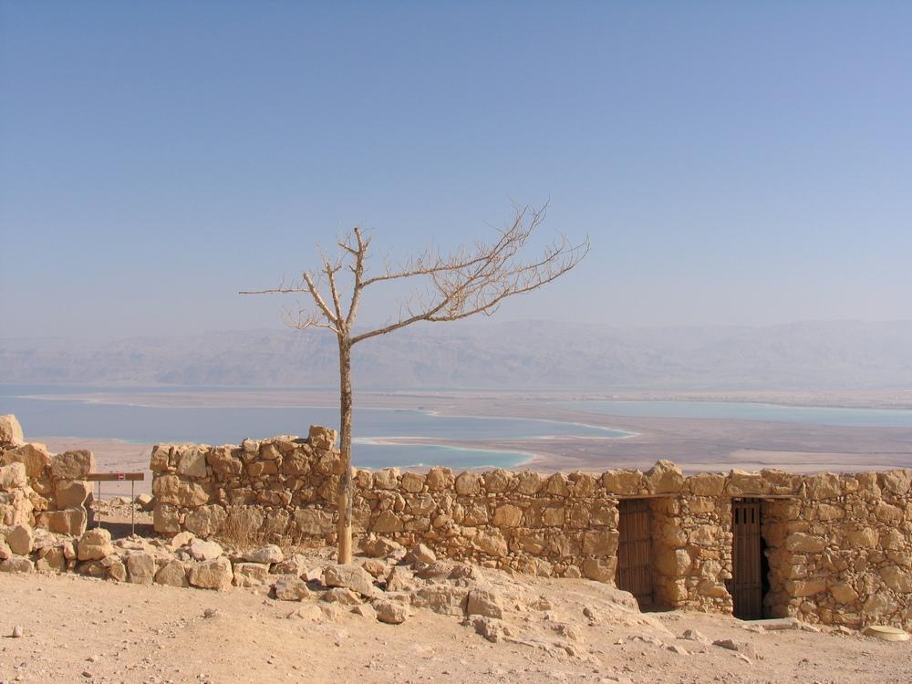 Масада (Metsada, Masada)