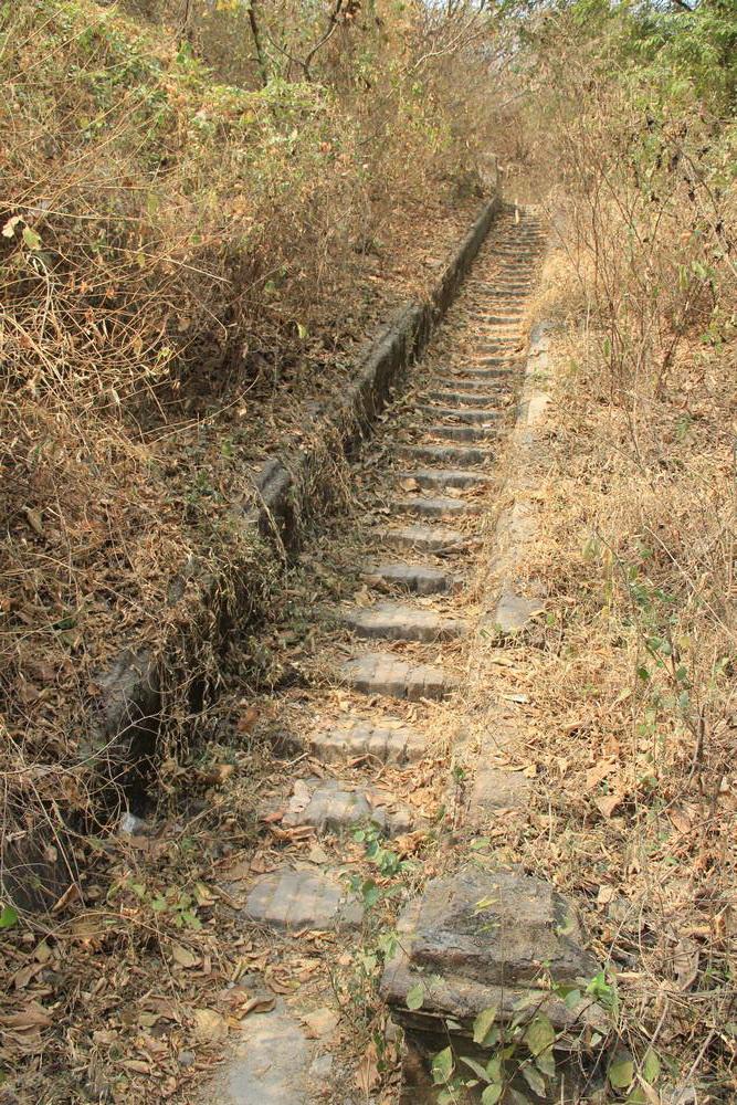 Заросшая лестница