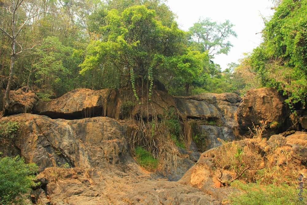 Северный Таиланд Водопад Па Суа