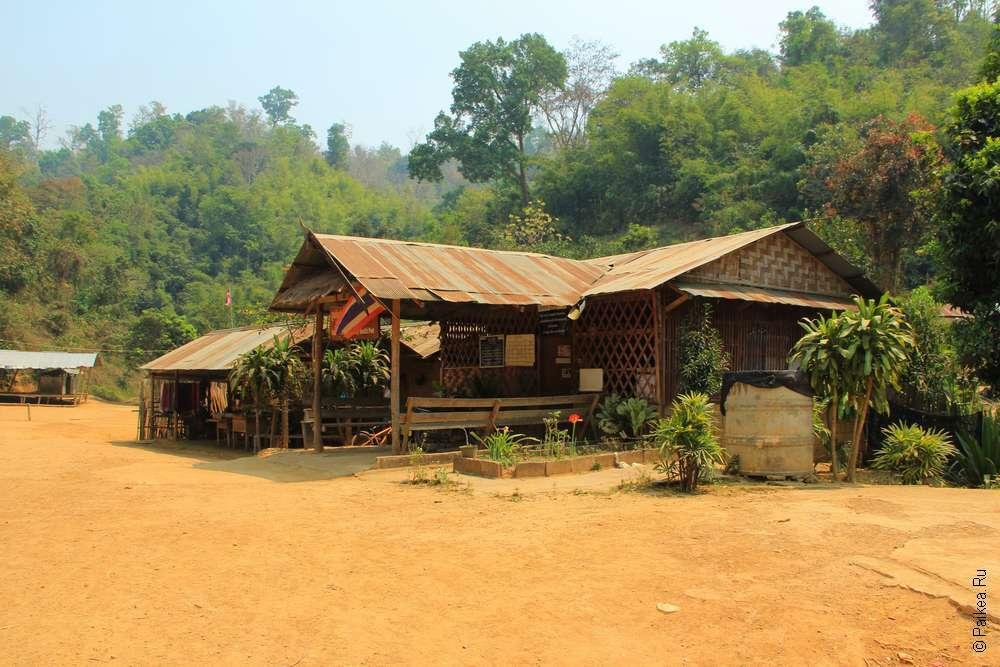 В деревне длинношеих