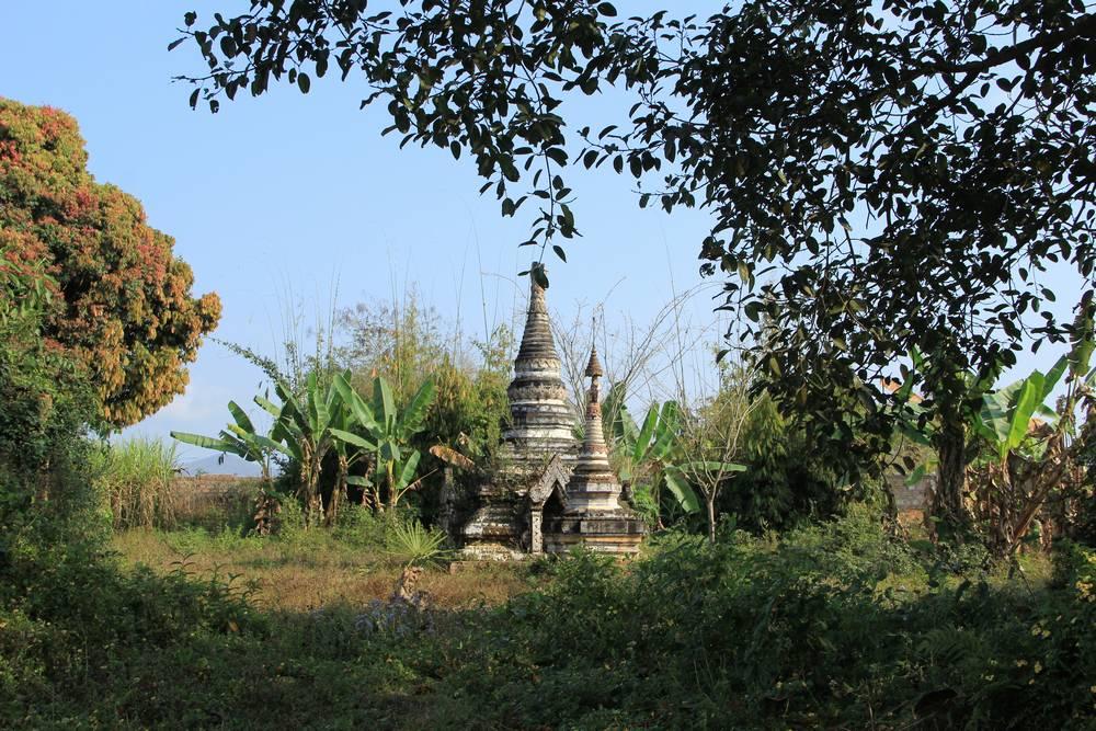 ступы в зарослях Мьянмы