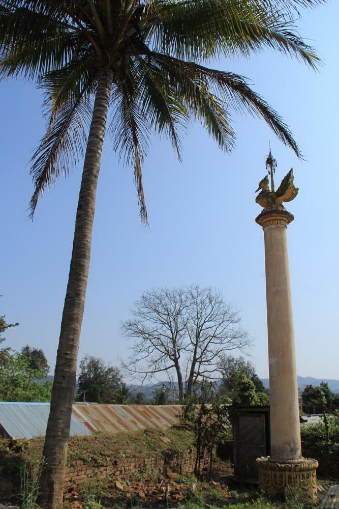 крыша под пальмой