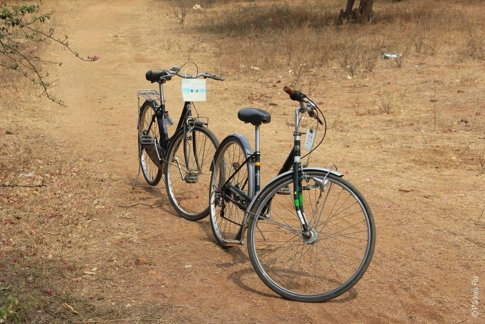 Аренда велосипеда в Багане