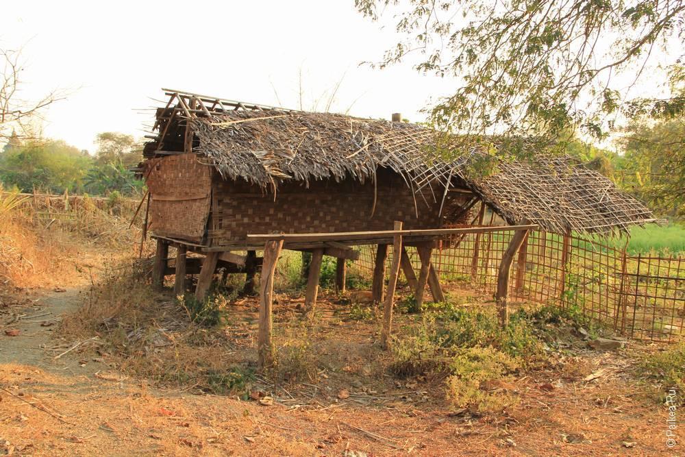 бамбуковая хижина
