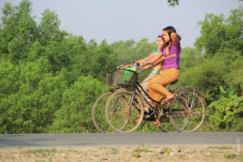 Две подружки на велосипедах