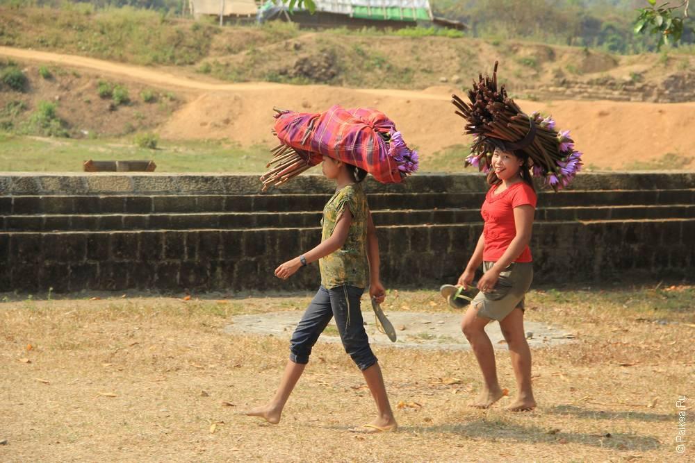 Цветы лотоса на голове несут