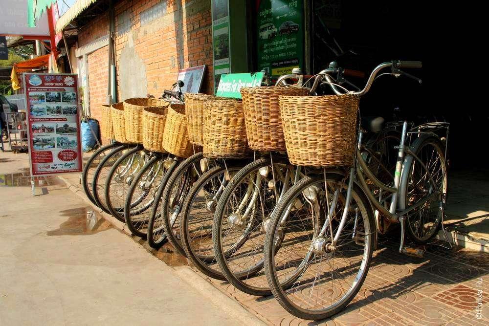 Ангкор на велосипеде