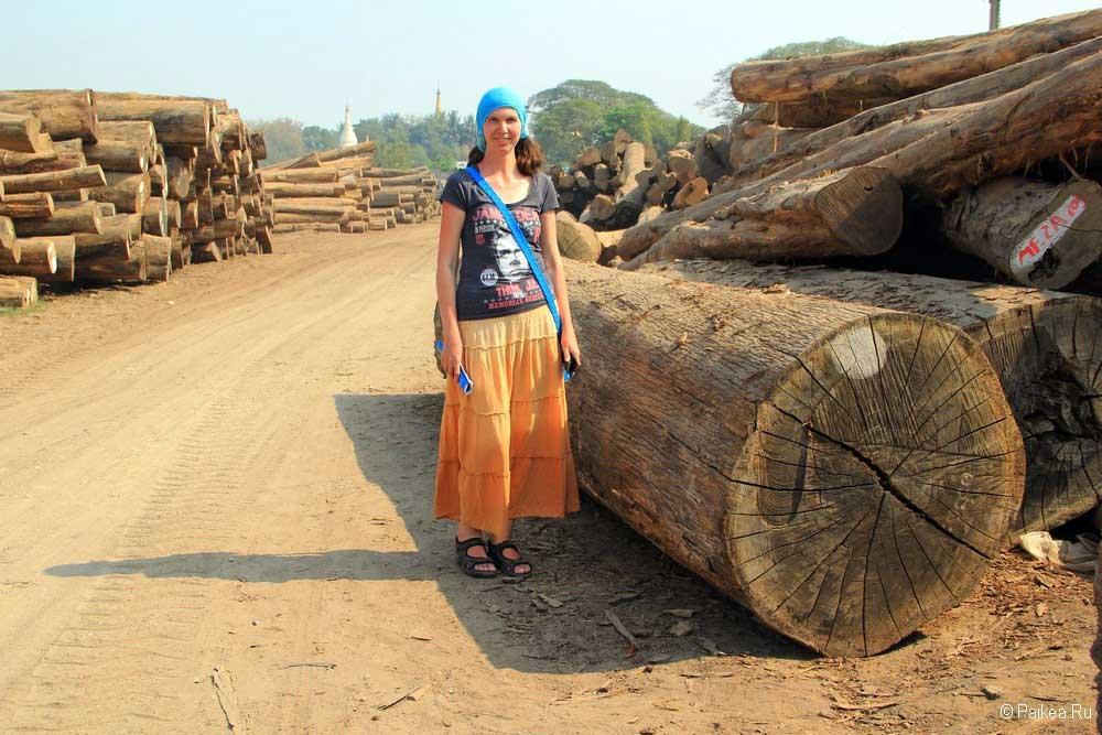 наше путешествие в мьянму
